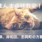 泉大津、岸和田、忠岡町周辺で日曜日限定の卓球教室やります!